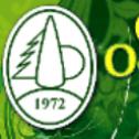 My mamy Zielone pojęcie;) - GREEN-PARK Stary Wiśnicz i okolice