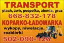 Koparko - ładowarka - Kamil Gumiński Boża Wola i okolice