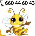 Honey Tax Sp. z o.o. Warszawa i okolice