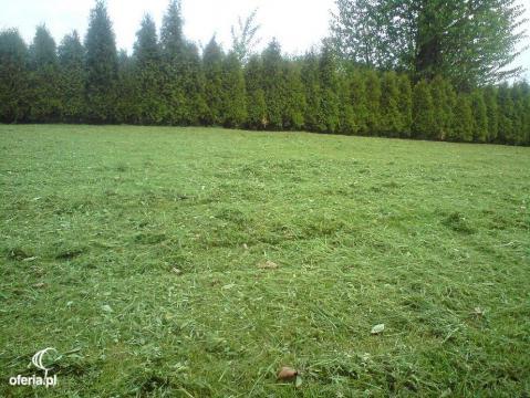 Koszenie trawy w marcu