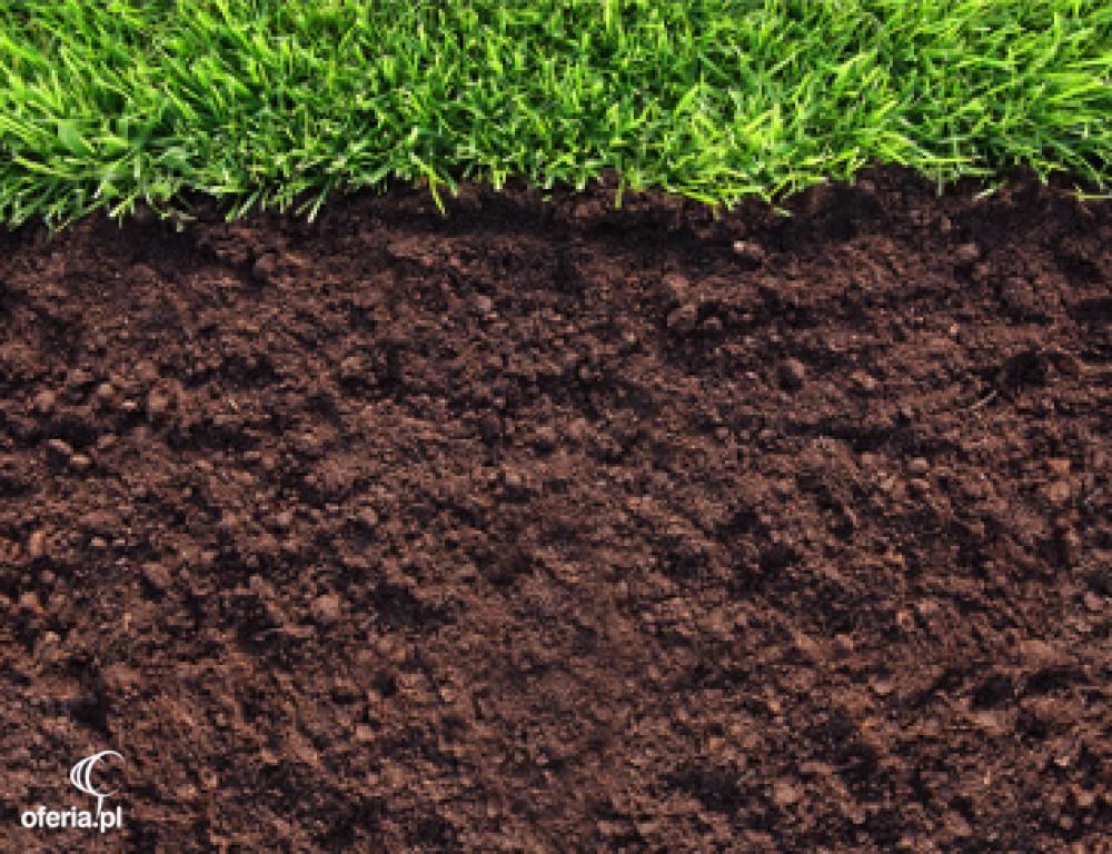 Ziemia ogrodowa czarna torfowa czarnoziem radom skaryszew for 0 4 soil carbon
