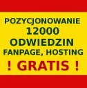 Strony www i nie tylko! - Zleć Stronę Spółka z o.o. Szczecin i okolice