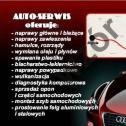 Auto-Serwis PEŁCZYCE i okolice